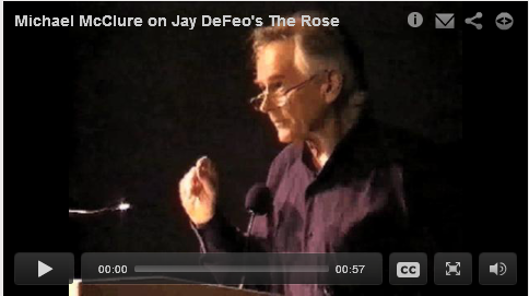 Michael McClure on Jay DeFeo's The Rose