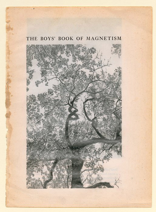 Colter Jacobsen, The Boys Book of Magnetism, 2011