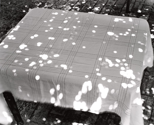 Abelardo Morell, Sunspots on Covered Table, 2000